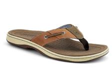 Baitfish Flip Flops - $55